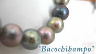Bacochibampo