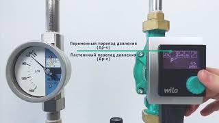 видео Насосы циркуляционные Wilo Stratos-Z