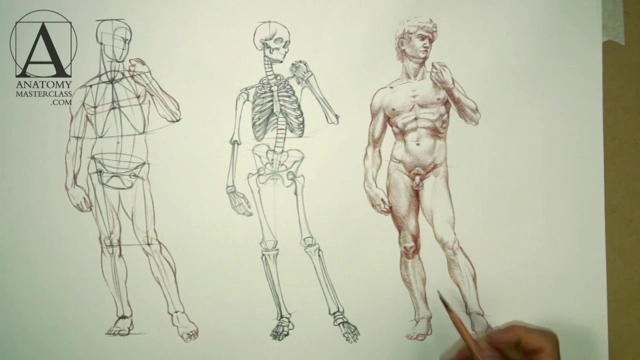 Human Anatomy Sketches With Flowers | Gardening: Flower and Vegetables