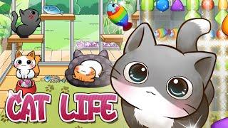 キャットライフ - cat life