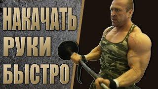 Бесплатная программа тренировки - РУКИ! Алексей Борисов thumbnail