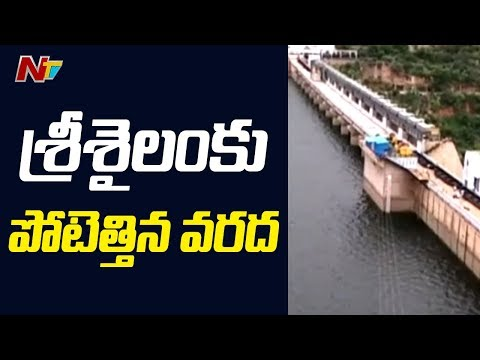 Srisailam Dam to Reach Full Capacity with Krishna Flood Water | NTV