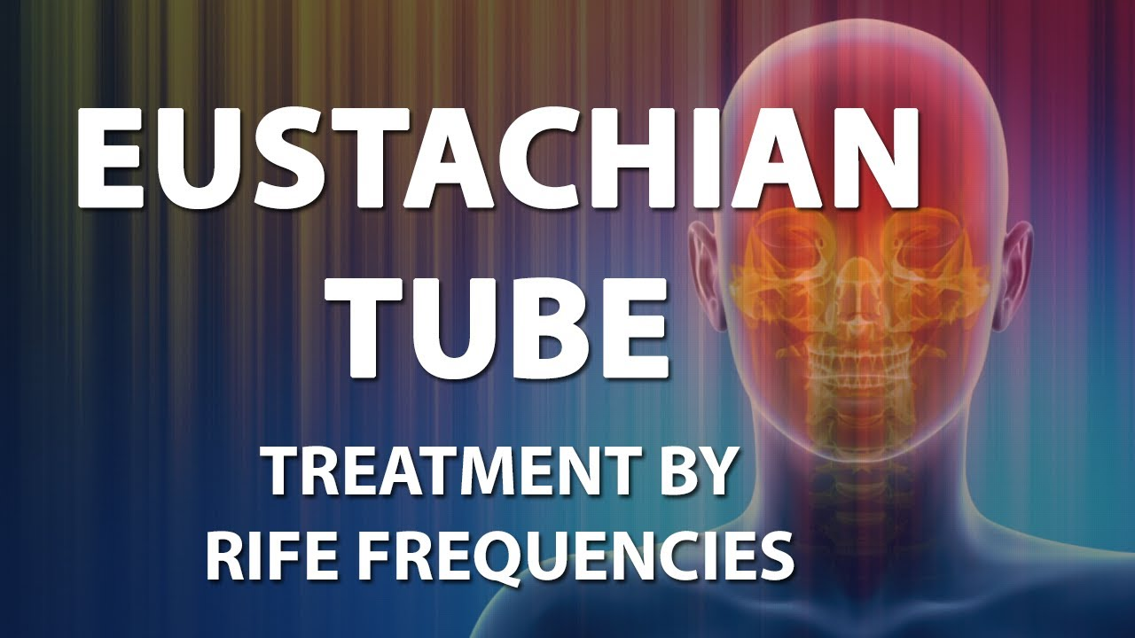 Eustachian Tube (Auditory) - RIFE Frequencies Treatment - Quantum ...