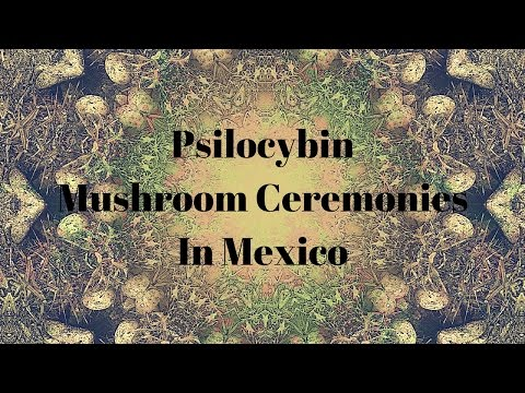 Psilocybin Mushroom Cermonies In Mexico w/ Oliver Quintanilla | Little Saints | ATTMind Ep.24
