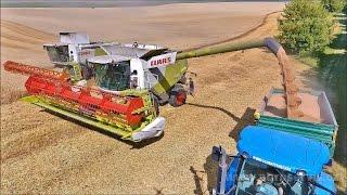 Harvest Ernte South Moravia CZ  - S...
