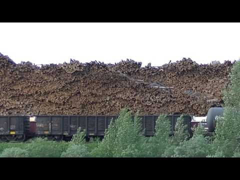 Canadian Soft Wood Lumber - Hearst Ontario