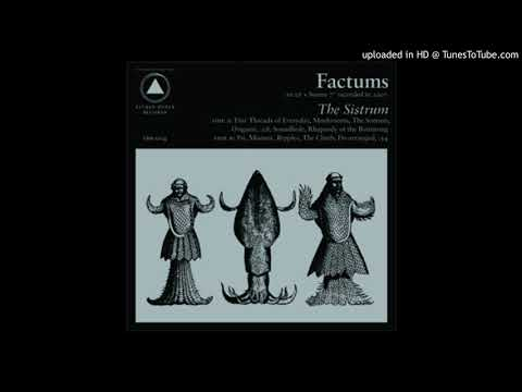 Factums - Soundhole