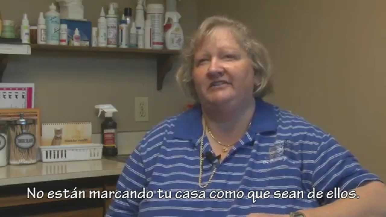 Watch Spay It Forward: How Spaying and Neutering Save Pets Lives video