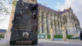 Neunaber Immerse Reverb, demo by Pete Thorn thumbnail