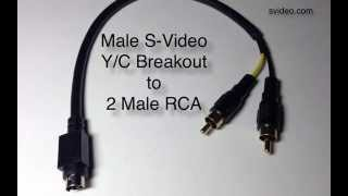 S-Video Male to Two RCA Male Breakout Cable