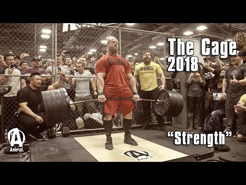 "The Cage 2018 | ""Strength"""