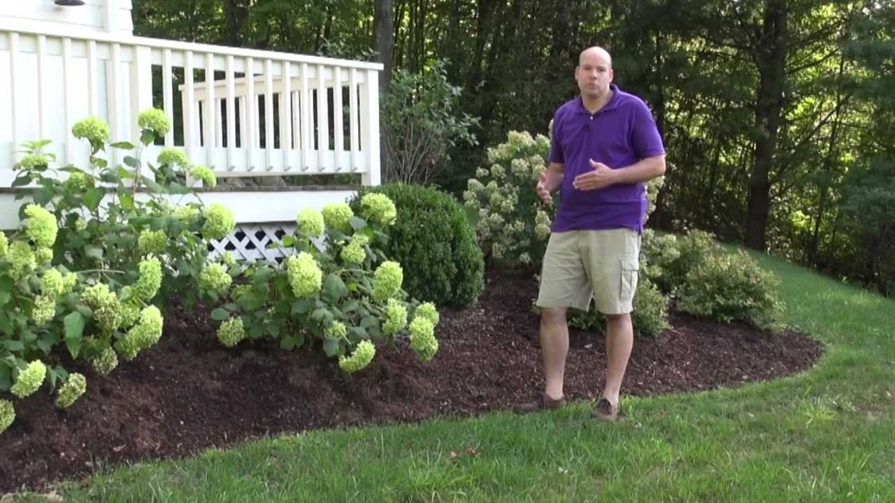 Front Yard Landscape Design Ideas   Trumbull CT Landscape Designer   YouTube