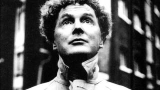 Watch Malcolm McLaren I Like You In Velvet video