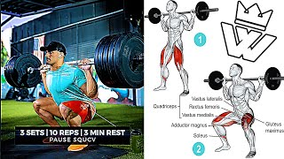FULL BODY WORKOUT ABS, LEGS, ARMS, CHEST, BACK