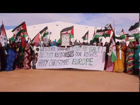 Western Sahara refugees celebrating EU Court judgement