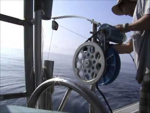 Bottom Fishing - Banks