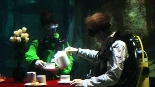 Aquarists at The SEA LIFE London Aquarium threw an underwater tea party for their sharks.