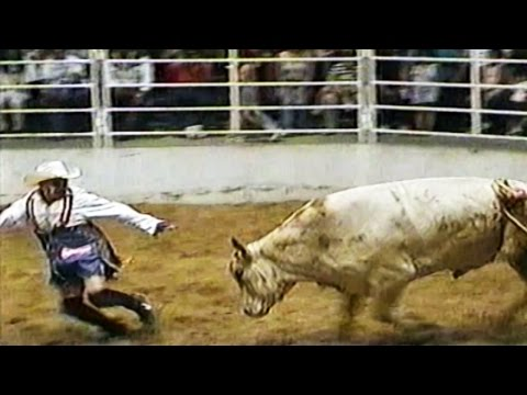 Funny Video Clips Fail Compilation 2015 Best Of Top Funny Home Videos