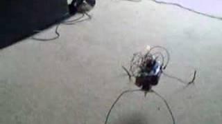 Bicore walker robot in action