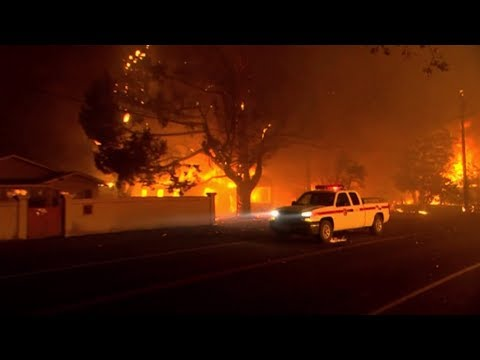 Urban Conflagration: Fire Scientist on Climate Change & What Makes California's Wildfires Different