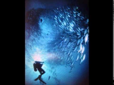 BIRMINGHAM - Musique :  Mario Vilas / B.N.V  Groupe 1994
