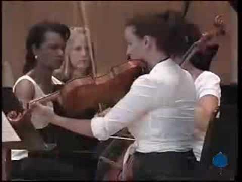 Dvorak Piano Quintet, 1st movement (part 1)