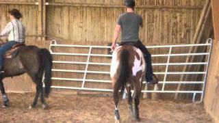Stage bétail Domaine de Chaboud 24-25 septembre 2011