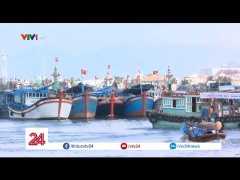 Cẩn trọng khi được tuyển làm thuyền viên đi biển | VTV24