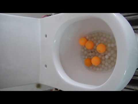 Hệ thống xả của thiết bị vệ sinh Clara