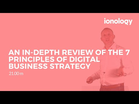 An In-depth Review of the 7 Principles of Digital Business S