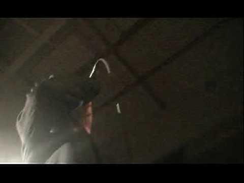 Frank Black Francis - Thalassocracy - Freedom Rock