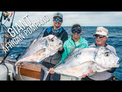GIANT African Pompano & Sailfish - Florida Keys Fishing Like You've Never Seen!