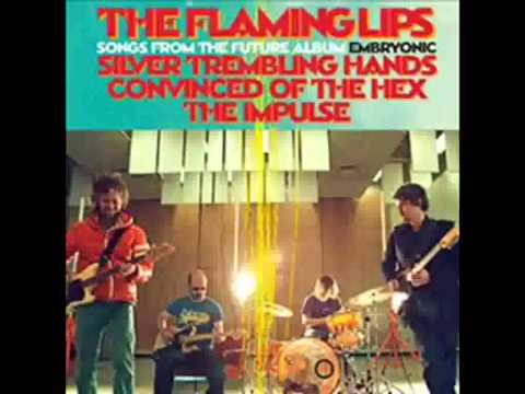 Flaming Lips, The - Convinced Of The Hex (with lyrics)