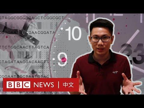 肺炎疫情:我們的生活何時才能恢復正常?- BBC News