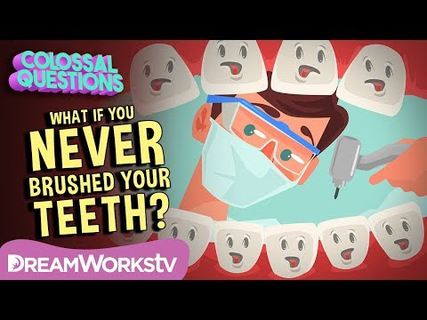 What If You NEVER Brushed Your Teeth?  COLOSSAL QUESTIONS