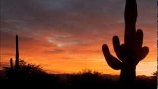 Play Desert Night