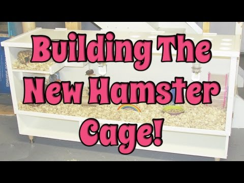 budgetbunny:-building-the-new-diy-bb-hamster-cage!