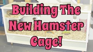 Budgetbunny: Building The New Bb Hamster Cage!