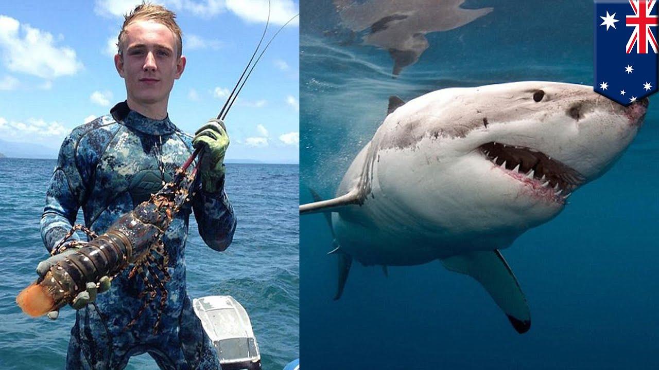 Australia Shark Attack: Queensland Teenager Daniel Smith