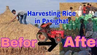 Harvesting Rice Tractor in Pasighat City Arunachal Pradesh Adi-Northeast-India At Sika Bamin village