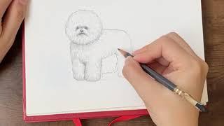 부비부비 강아지 일러스트 32초 동영상