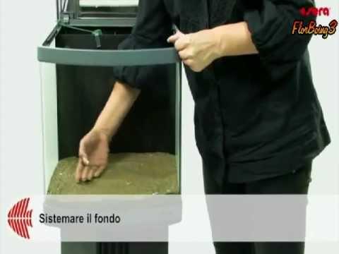 Allestire un acquario sera acquari biotopo youtube for Sera acquari