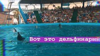 VLOG:Олимпийский парк Сочи , Поющий фонтан.АДЛЕРСКИЙ ДЕЛЬФИНАРИЙ САМЫЙ ЛУЧШИЙ!!