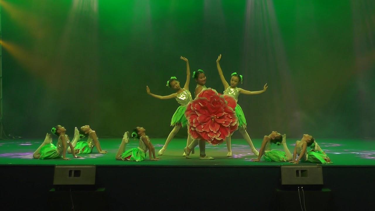 儿童舞蹈 踏春乐