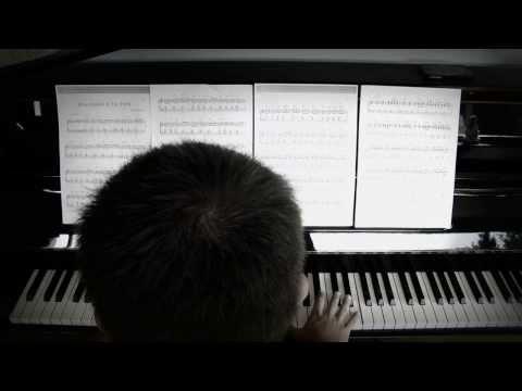 Fly de Ludovico Enaudi au piano (BO) film INTOUCHABLES