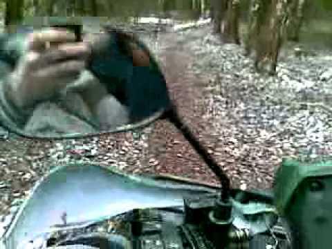 По лесу на квадроцикле Годзилла 150