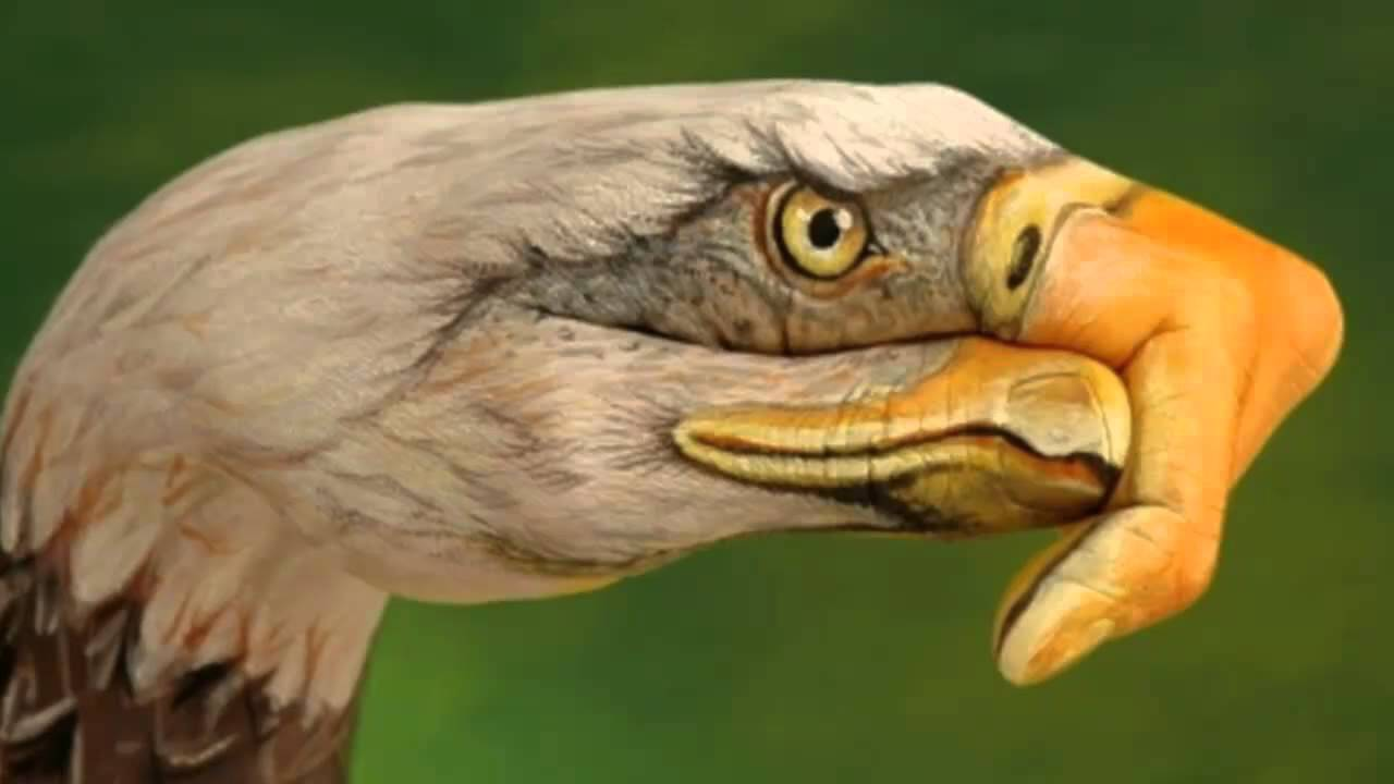 eagles-take-it-easy-hd-theeagleshd