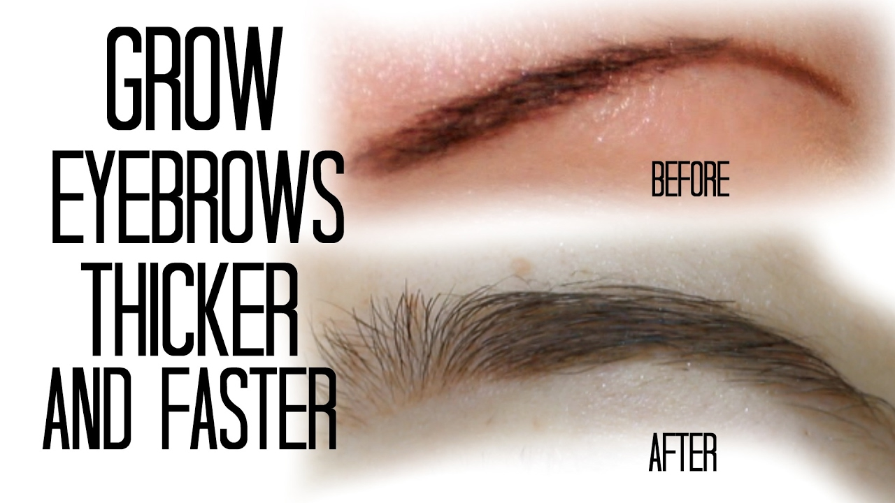 How To Grow Your Eyebrows Thicker And Faster Naturally Stesha