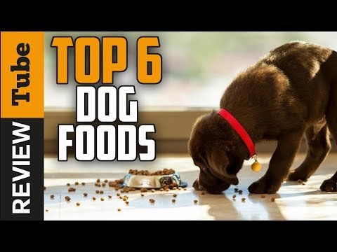 ✅dog-food:-best-dog-food-(buying-guide)