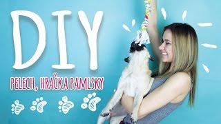 DIY dog supplies | Lucy & Lili